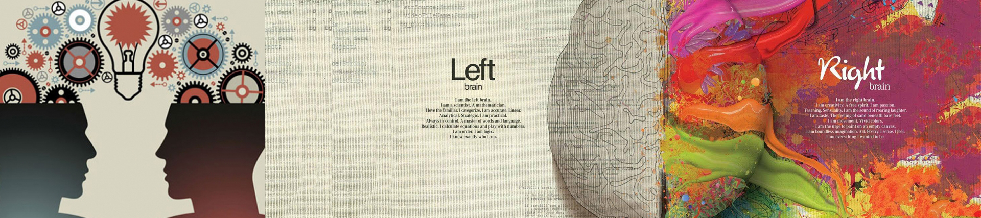 Left right brain theory