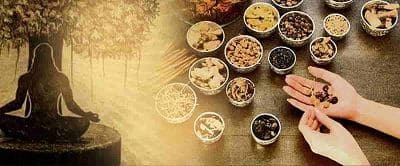 Ayurvedic Colleges in Bangalore