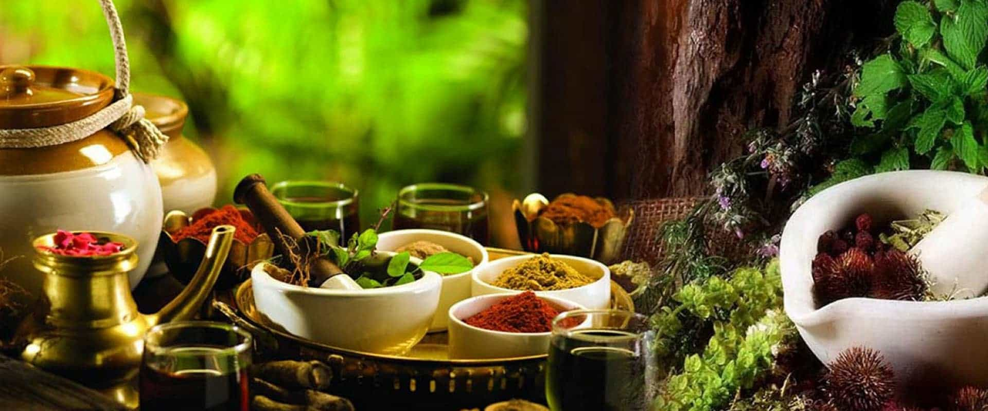 Ayurveda Colleges in Karnataka